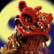 kungfumaster-lion